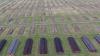 Auschwitz, il video girato con il drone rivela la grandezza del campo di sterminio