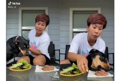 """Il video della cagnolina vegetariano """"per scelta"""" che fa sorridere il web"""