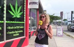 La Florida dice sì alla medical marijuana: 105 Miami ci parla di questa svolta