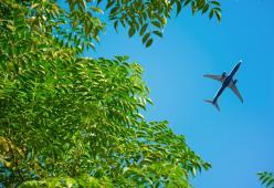 Dall'aereo piovono escrementi che colpiscono un uomonel suo giardin o