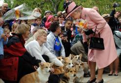 La Regina Elisabetta ha lanciato i suoi biscotti per cani