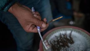 Il viagra dell'Himalaya è più prezioso dell'oro ma procurarselo è pericolosissimo