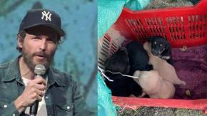Jovanotti dal cuore grande: ecco il suo aiuto per i cani abbandonati