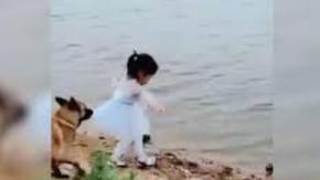 Bimba tenta di recuperare la palla in acqua ma il cane la ferma e va a prenderla lui: il video virale