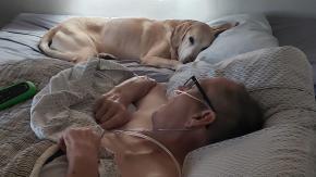 Cane fedele muore un'ora dopo il suo padrone malato di tumore: la storia commuove il mondo