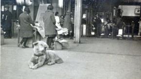 Ritrovata una rara foto di Hachiko, il cane diventato un simbolo di fedeltà