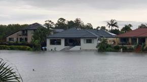 Australia, uno squalo nuota tra le case seminando il panico [foto]