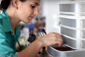 Su Kickstarter puoi finanziare la fattoria da cucina per insetti commestibili