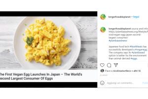 In Giappone hanno creato un uovo vegano fatto interamente di ingredienti vegetali
