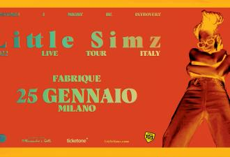 Little Simz: il 25 gennaio 2022 live al Fabrique