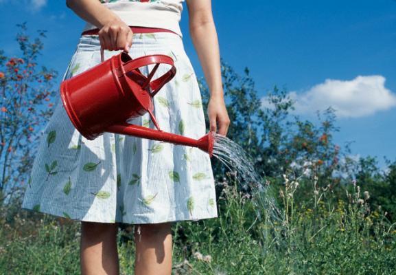 L 39 acqua della pasta ecco 6 motivi per cui non devi for Annaffiare le piante