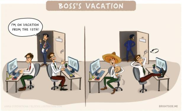 Le Vignette Che Mostrano La Verit Sulla Vita Da Ufficio