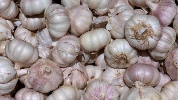 come mangiare aglio giapponese per perdere peso