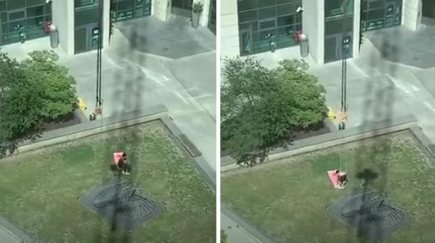 L'esilarante scherzo del gruista all'uomo che prende il sole è virale