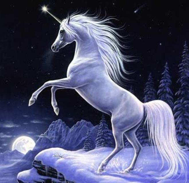 Risultati immagini per unicorni