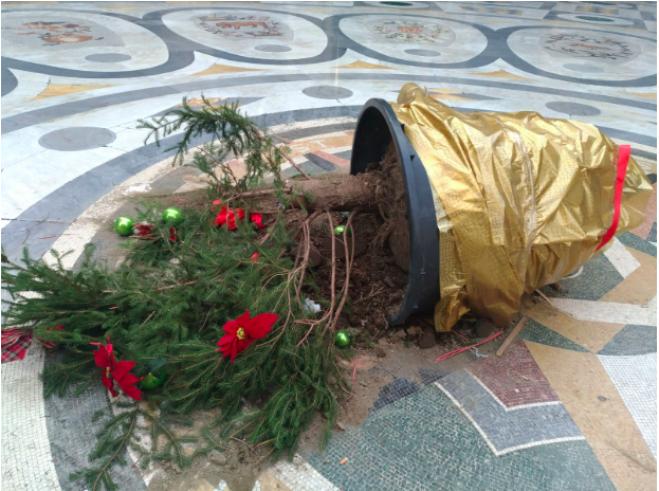Napoli, rubato e ritrovato l'albero di Natale della Galleria