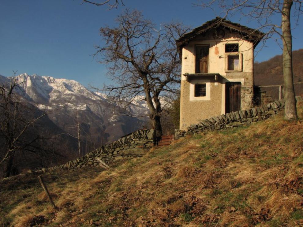 Le 5 case pi infestate d 39 italia foto 1 di 5 radio 105 - Obblighi del proprietario di casa ...