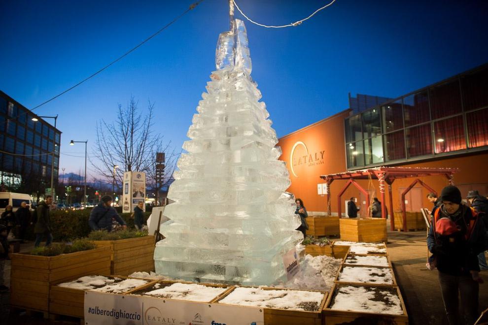 ecco lo spettacolare albero di ghiaccio di torino foto 1