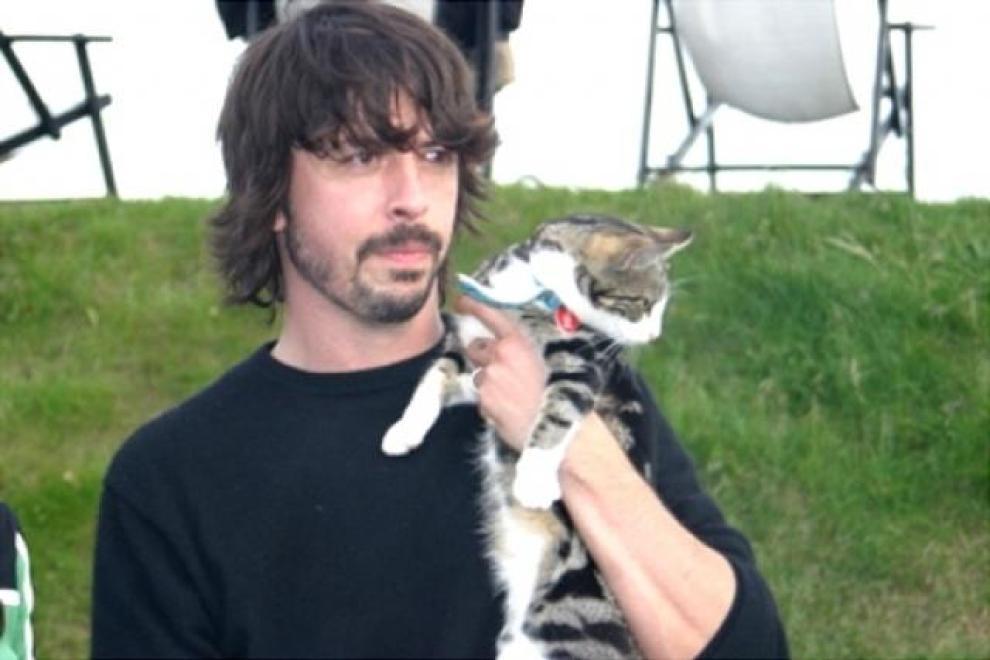 Risultati immagini per rockstar che amano i gatti